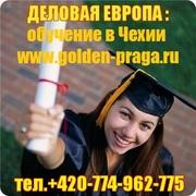 Языковые и подготовительные курсы в Чехии
