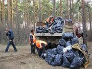 Вывоз и утилизация строительного мусора.285-66-48