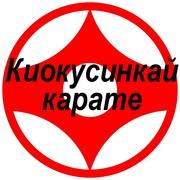 Секция киокусинкай карате в северном