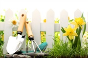 Уход за садом. Озеленение.