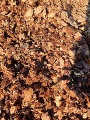 Продам кедровую кору,  дробленая фракция 5-20 мм.